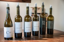 Druk My Niet, Wine tasting, Cape Town